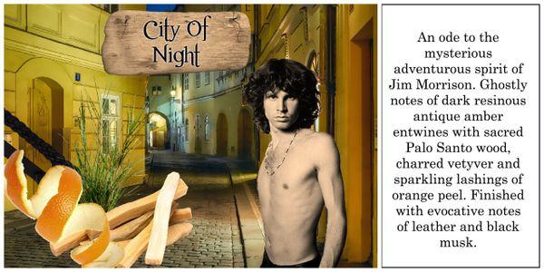 City of Night Luxury Soy Wax Tart 30hr