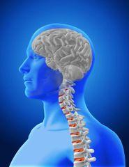 QST™| Chiropractic Workshop January 24-25 2020 Atlanta/ Roswell, GA
