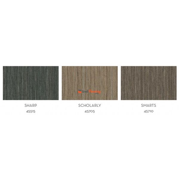Shaw Philly Intellect Carpet Tile @ $1.99 sq ft