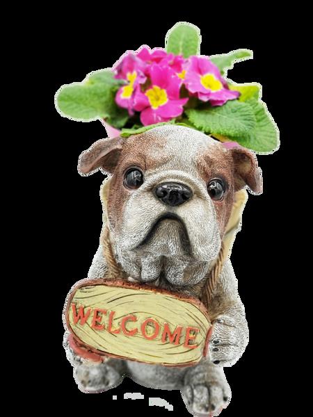 14009-Loyal Bull Dog Planter Figurine