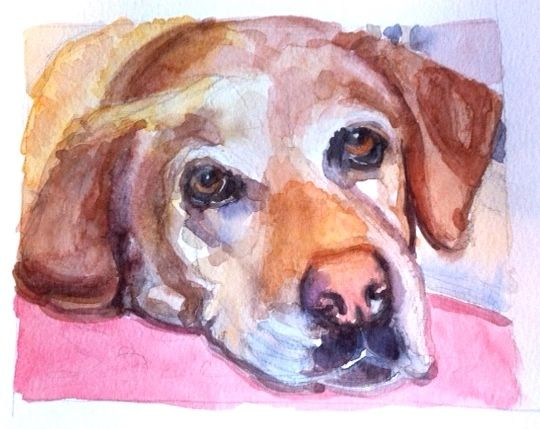 Watercolor Pet Portrait- Head Only