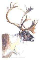 12 Printed Reindeer Place Cards