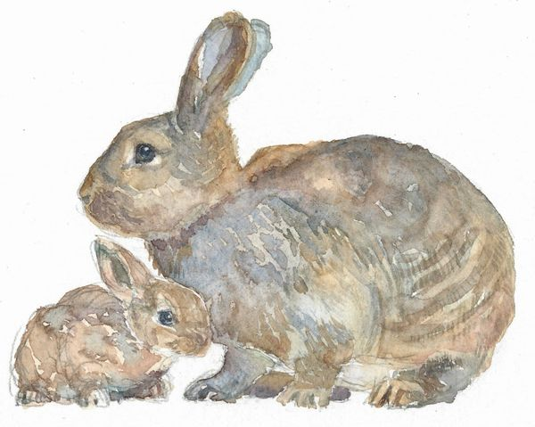 Original Watercolor - Mom and Baby Bunny 2- SOLD