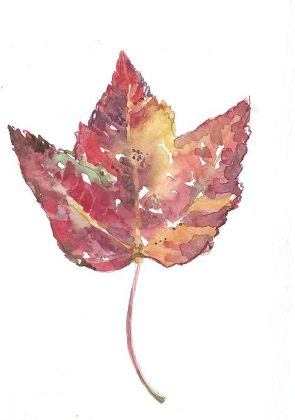 Original Watercolor - Fall Leaf red