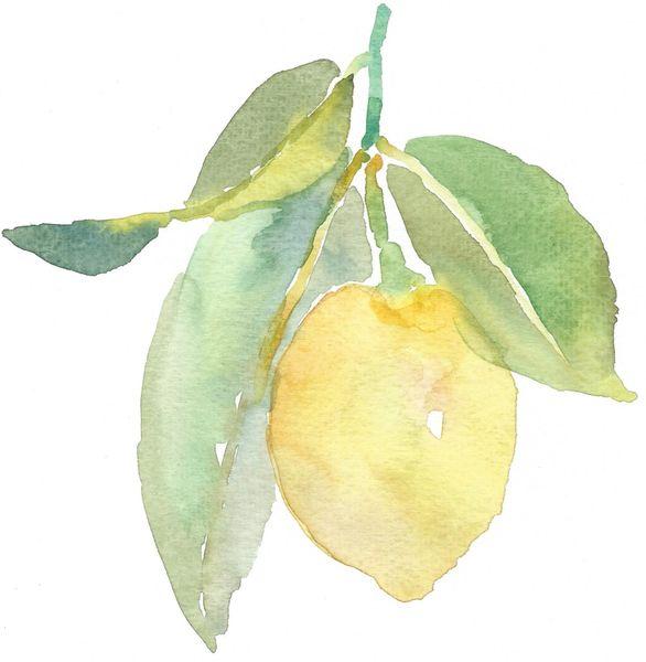 12 Printed Lemon Place Cards