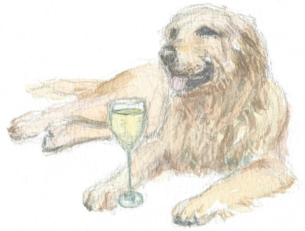 12 Printed Place Cards - Golden Retriever with Chardonnay