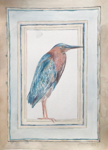 Green Heron Framed