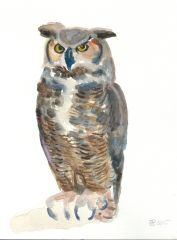 Owl Watercolor-SOLD