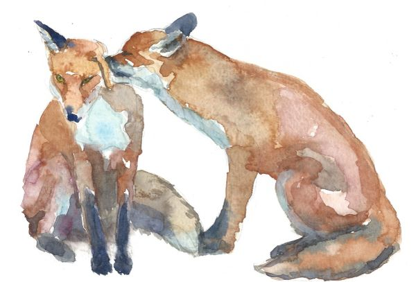 12 Printed Fox Love Place Cards