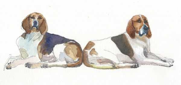 12 Printed Place Cards of Hounds Lounging