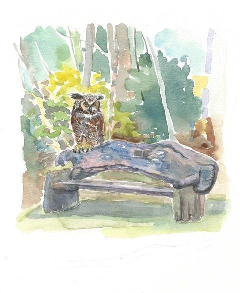 Limited Edition Print of Owl and Bench