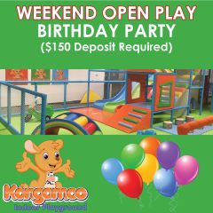 Birthday Party: Weekend OPEN PLAY ($150 Deposit Required)