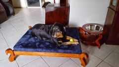 Angel Dog Bed LARGE