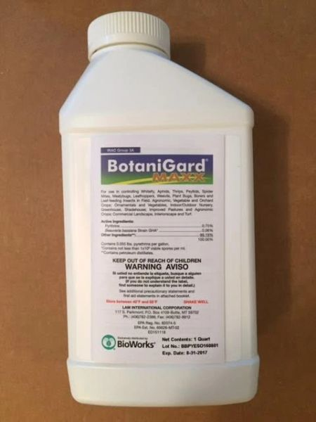 BotaniGard MAXX Insect Control Mycoinsecticide (QUART)