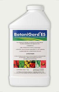 Botanigard ES Biological Insecticide