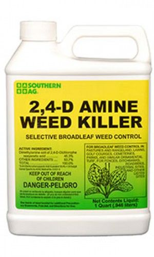 AMINE 2;4-D WEED KILLER - Quart