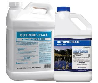 2.5 Gallon Cutrine Plus Aquacide