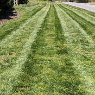 Lawn Care, striped lawn with green grass