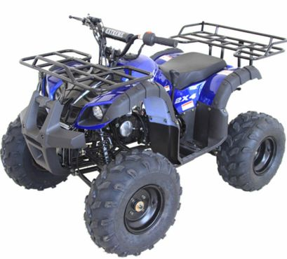 125cc Kids ATV with Remote engine kill, throttle limiter and REVERSE FREE  SHIPPING