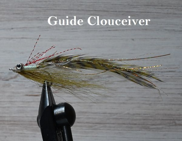 Guide Cloueceivers