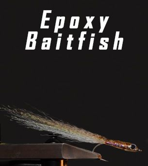 Epoxy Bait Fish