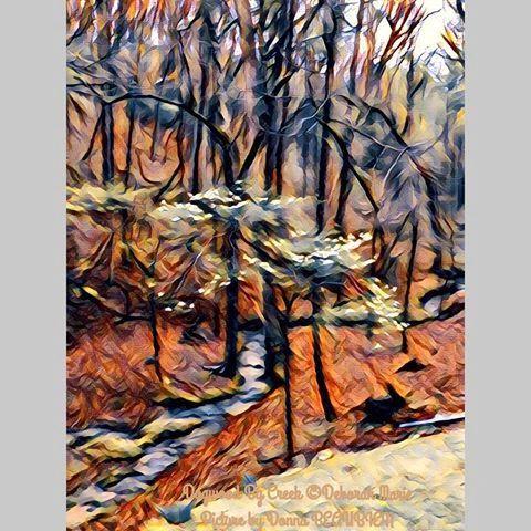 Dogwood by The Creek