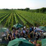 East End Wine Tasting - Thurs, August 20, 2020