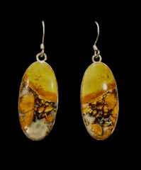 Noreena Jasper Earrings