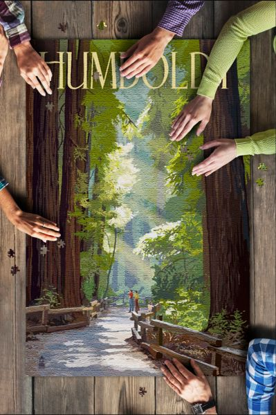 1000 Piece Puzzle - Humboldt, California, Redwoods, Pathway