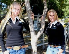 Ladies Slim Fit Rugby Jumper - Low in Stock Check Size and Colour for Availability
