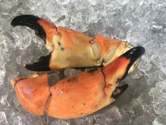 Colossal Stone Crab Claws 1 pound