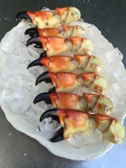 Medium Stone Crab Claws 1 pound