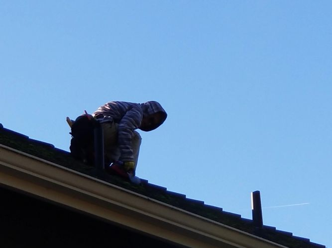 Salem roofing contractor, best roofing company, roof repairs, roofing services, roofing needs, roof