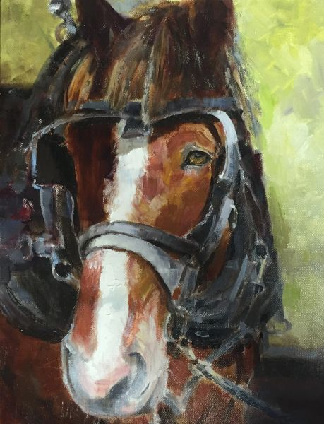 Oil Paintings by Wayne E Campbell (Joey Up Close)11x14