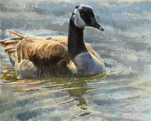 Oil Paintings by Wayne E Campbell (Cruising)
