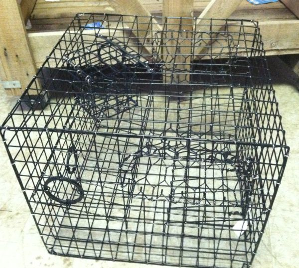 "MED SIZE CRAB POT/ TRAP-2 TIER-VINYL COATED L18""x W18""x H15"" ENTER 2 SIDES-USA"