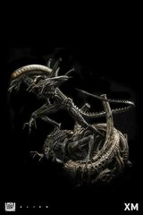 XM Alien Warrior <Procurement Service> Deposit