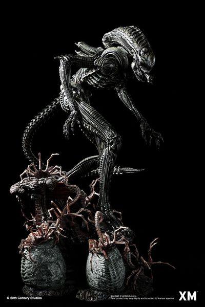 XM Alien Hive-Warrior Black Variant w/Plaque (Pre Order) <Procurement Service> ES Max 499