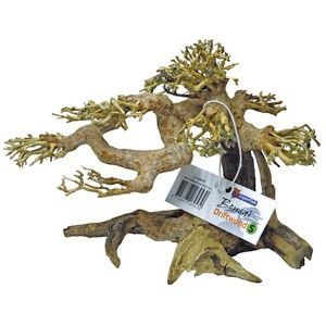 *ONLINE ONLY* Superfish Natural Wood Bonsai Driftwood Small