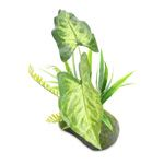 *ONLINE ONLY* PROREP Artificial Gigas (Philodendron) Plant 35cm