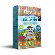 *ONLINE ONLY* Little Big Paw Adult Atlantic Salmon