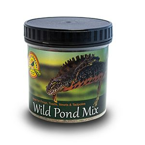 *ONLINE ONLY* Garden Dreams Wild Pond Mix 45G