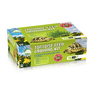 *ONLINE ONLY* ProRep Tortoise Feed Growing Kit