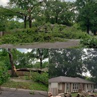Emergency Tree Care Services & Storm Response Johnson County, Kansas, USA