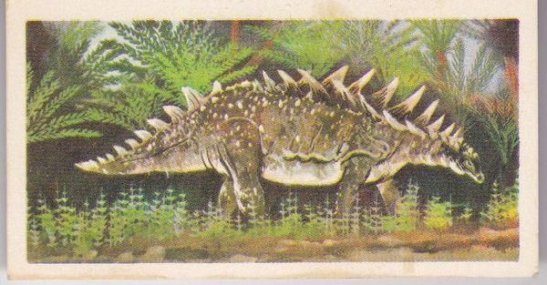 No. 20 Polacanthus