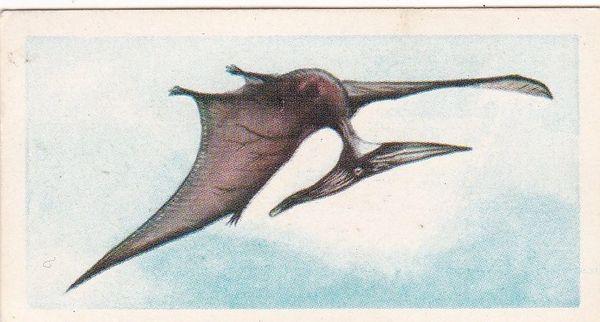 No. 28 Pteranodon