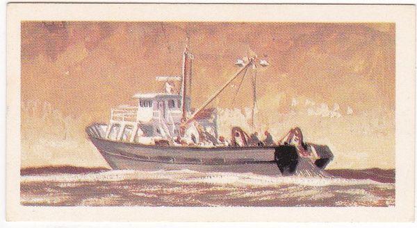 No. 46 Trawler