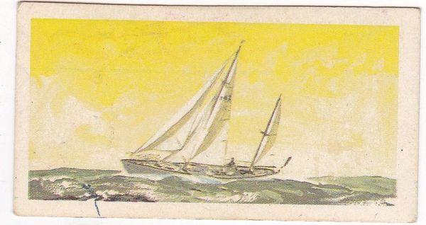 No. 49 Gypsy Moth IV