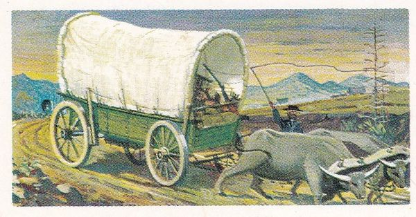 Trade Card Brooke Bond Transport Through the Ages No 04 Ox Wagon