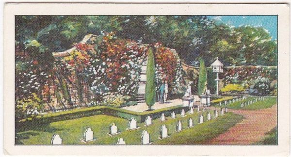 No. 09 The Pet's Cemetery